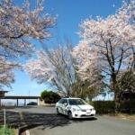 鳥取県自動車学校の合宿免許に参加した人の口コミまとめ